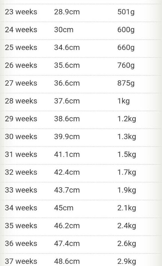 Pregnancy Chart - Maatriyoga
